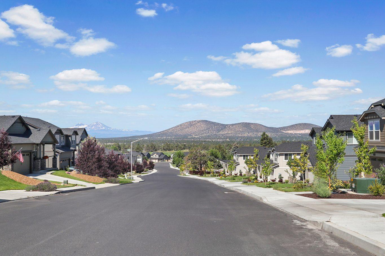 Suburban neighborhood streetscape